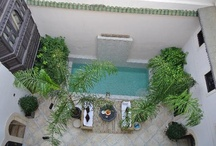 pool ideas for riad star / by Lucie Wood