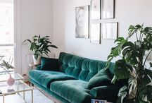It started with a green couch