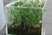 idee acriliche per il giardino