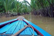 Delta del Mekong / El delta del mekong, la zona más famosa del sur de Vietnam.