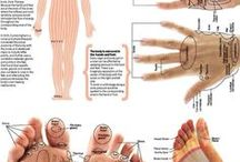 reflexology / advantage of reflexology