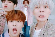 The Rose (더로즈) / Bias : Woosung & Jaehyeong Bias Wrecker : Dojoon Members : Hajoon, Woosung, Dojoon, Jaehyeong Fandom Name : Black Rose