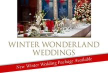 Winter Wedding Ct / Winter Weddings at the Pond House in Elizabeth Park are spectacular and beautiful!