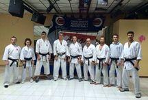 Academy / Accademia di Karate Wado Ryu. Offriamo ai nostri associati ed a coloro che vogliono collaborare un servizio di alta qualità. Con attività di livello Nazionale ed Internazionale.