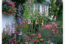 artists cottages