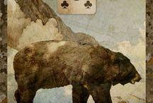 15 Niedźwiedź