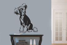 Dog grooming Salons / Dog grooming