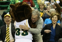 Baylor / by Meredith Beall