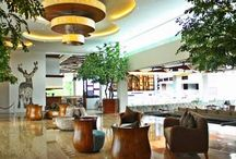 Lighting Design Projects: Hospitality