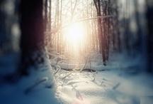 Wintersonnenwende - Tiefste Dunkelheit und Wiedergurt des Lichts