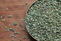 Fabulous Fennel / by World Spice Merchants