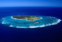 Lady Eliott Island Australia / Visit our site www.snorkelaroundtheworld.com Build up our snorkeling community :)