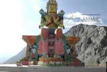 anything ladakh