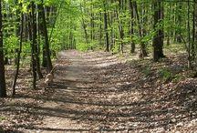 Lesy Louky háje