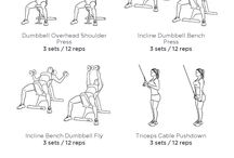 Exercise - Chest + Shoulders + Biceps