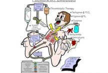 Respiratory Therapy  / by Emily Page