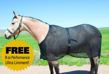 Arenus Products For Horses / All Arenus products dedicated to your horse