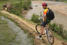 Biking Sapa