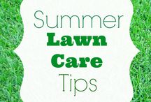 Summer Lawn Care Tips / Lawn care tips from The Espoma Company, pioneers in organic gardening since 1929. Organic lawn care starts in the soil. A green, lush, healthy lawn has strong roots and offers the best protection against weeds, insects and diseases. By feeding your lawn in the summer, with natural and organic fertilizers, you will not only protect your lawn from drought, but also one that is safe for kids and pets.