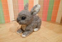 králíčci, rabbit