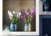 &BLÜHENDE ZIMMERPFLANZEN / Bunt blühende Zimmerpflanzen setzen gekonnte Farbtupfer in den heimischen vier Wänden.