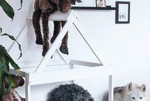 DIY - Dogs equipment