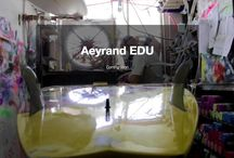 Aeyrand / Aeyrand Edu is the first truly online vocational eLearning platform. Presented in Dutch and English. eLearning for students and course hosting for tutors. No large files sent through the post. Everything happens online within your personal learning area. Learn when it suits you