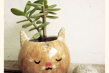Young Spirit Decor / by Cooltonic (Alejandra Daneliuc)