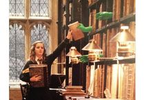 Harry potter things