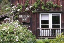 Big Sur Roadtrip? / by Ashley Brooks