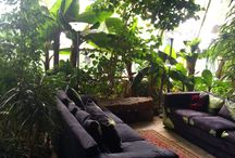 Greenhouse living / Inside
