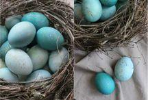 Покраска яиц Краснокамск неоценимую капустой