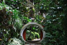 garden structure  / by Richard Carter