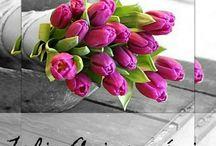 Flores para festejar