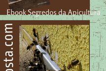 Livros da apicultura / apicultura natural,orgânica,sem químicos nem pesticidas de qualquer espécie.Onde as Abelhas são felizes,em colmeias e ceras Naturais