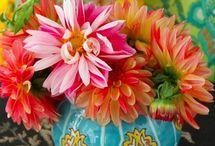 Fabulously florid flowers