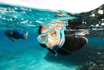 Explorer les fonds marins en randonnée palméee