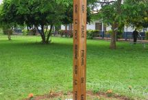 Peace Poles / These Peace Poles are located on many School Sisters of Notre Dame's campuses and sponsored ministries. Peace Poles represent people of all faiths and nationalities worldwide who are striving for a better world.
