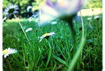 Summertime ✈☀
