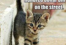 omg cute!!!