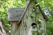 Bird houses and nests