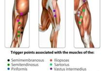 trigger points HIP SY