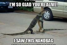 Handbag Humor / OK, Should have spelt it HUMOUR; I'm British, after all!
