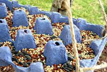 Madáretetők - Bird feeders