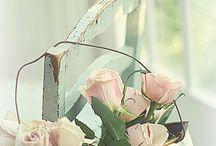 bloemen / by louisarietveld@hotmail.com louisarietveld@hotmail.com