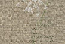 x-szemes virágok
