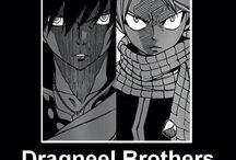 Dragneels