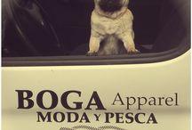 #Mascotas / Nuestros mejores capitanes del barco