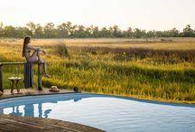 Best Safari lodges in Botswana