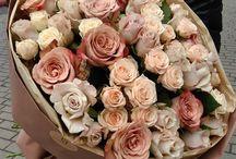 пудра цвет